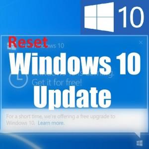 Не могу принять лицензионное соглашение при попытке сбросить Центр обновления Windows