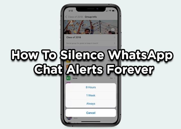 Как навсегда отключить оповещения чата в WhatsApp с помощью функции «Всегда отключать звук»